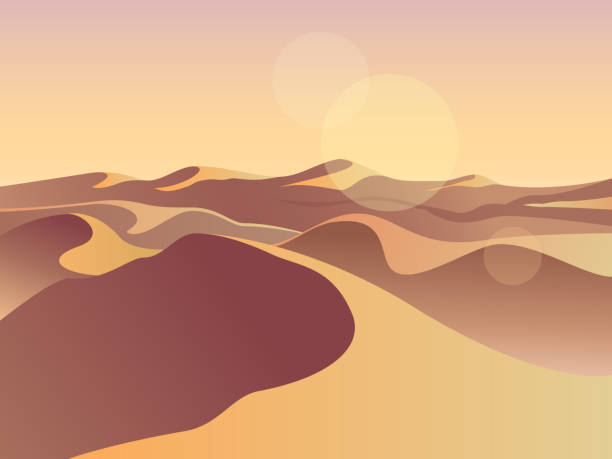 日没金砂漠。砂丘。風景デザインのベクター イラスト。中東の砂漠の山々 の砂岩の背景。自然を砂します。 - 砂漠点のイラスト素材/クリップアート素材/マンガ素材/アイコン素材