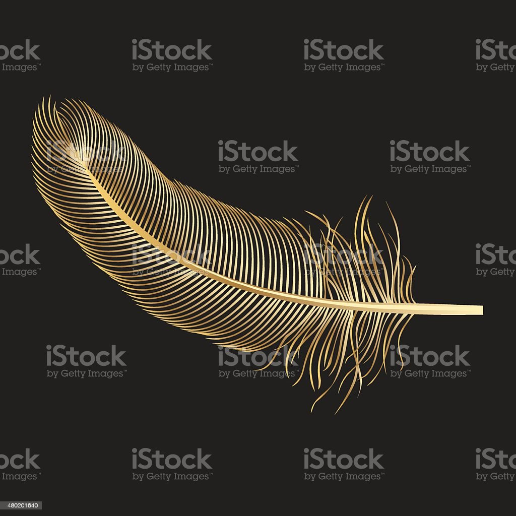 Gold Feather vector art illustration