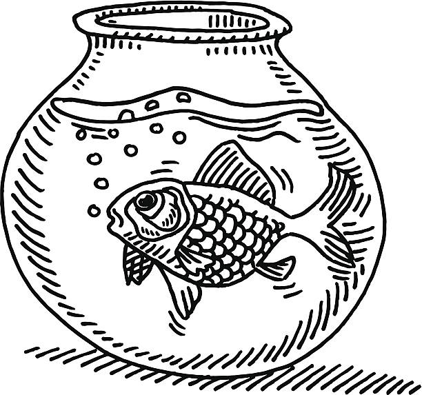 Top 60 Empty Fishbowl Clip Art Vector Graphics And Illustrations