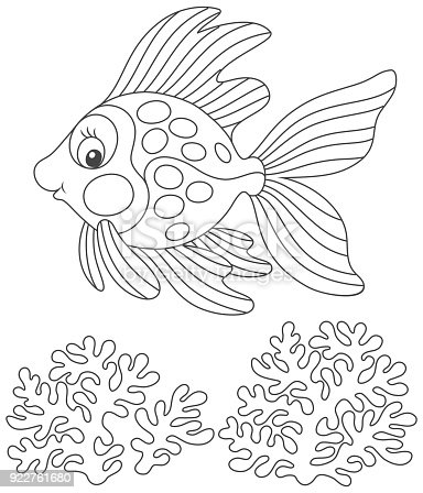Tropical goldfish friendly smiling and swimming over corals, a black and white vector illustration in a funny cartoon style for a coloring book