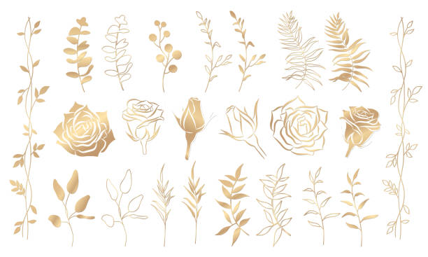 gold blumen-set - gartenfolie stock-grafiken, -clipart, -cartoons und -symbole