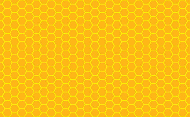 Gold honey hexagonal cells seamless texture. Mosaic or speaker fabric shape pattern. Golden honeyed comb grid texture and geometric hive hexagonal honeycombs. Vector illustration vector art illustration