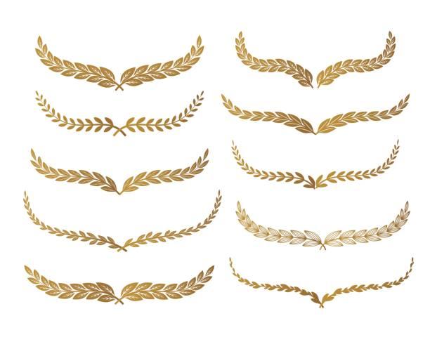 Gold laurel set vector Gold laurel set vector illustration bay leaf stock illustrations