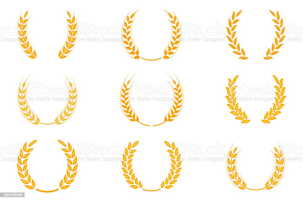 Gold Laurel Wreath A Symbol Of The Winner Wheat Ears Or Rice Icons