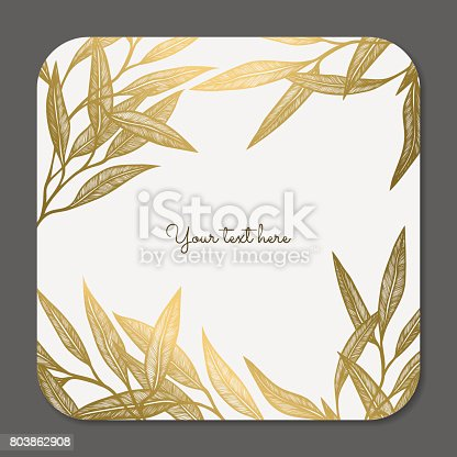 Vector decorative collection of floral frame