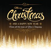 Winter Christmas golden party invite, poster or background vector