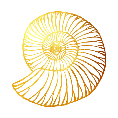 Gold Nautilus Isolated. Hand Painted Clip Art Design Element for Labels, Business Cards, Flyers.