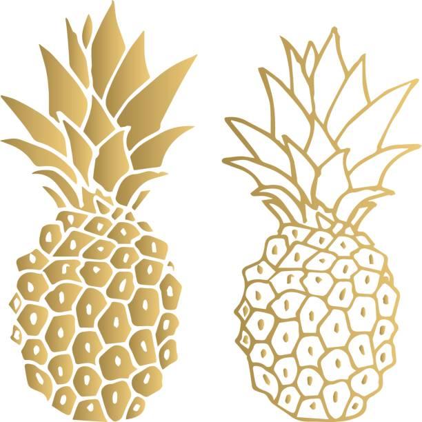 Gold pineapple. Vector illustration. Isolated. – artystyczna grafika wektorowa