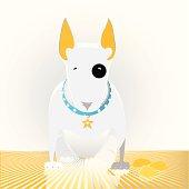 star bull terrier puppy