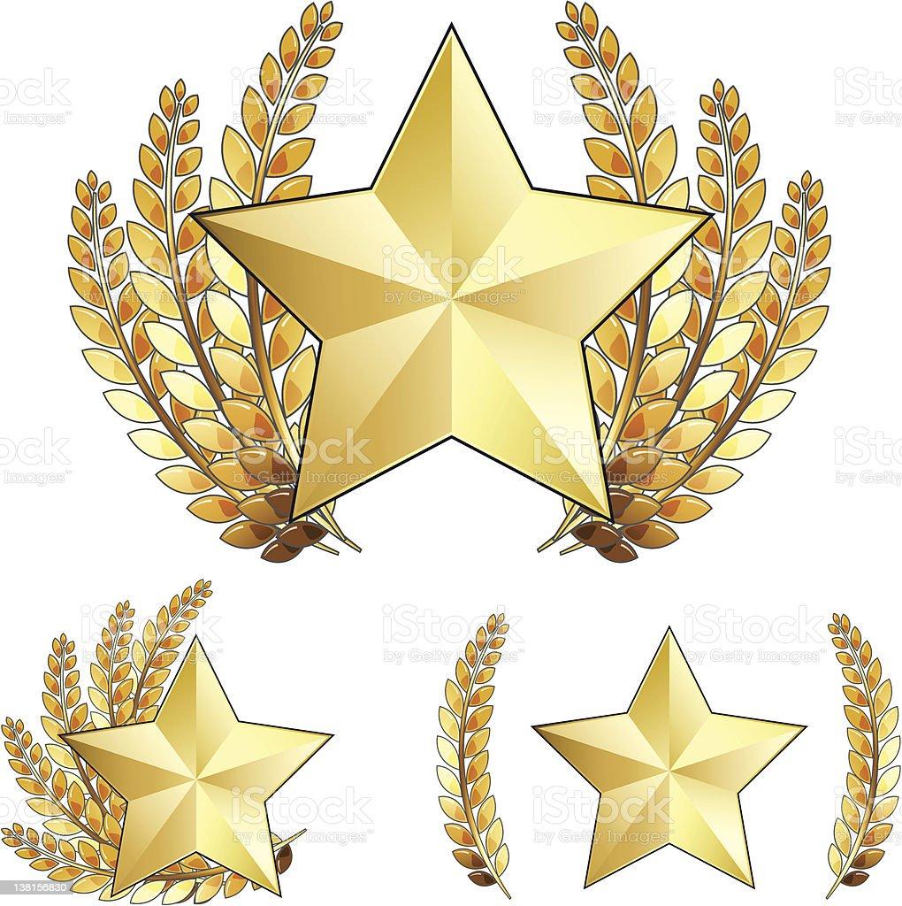 Gold Star Award with Laurel Wreath, Vector Illustration vector art illustration