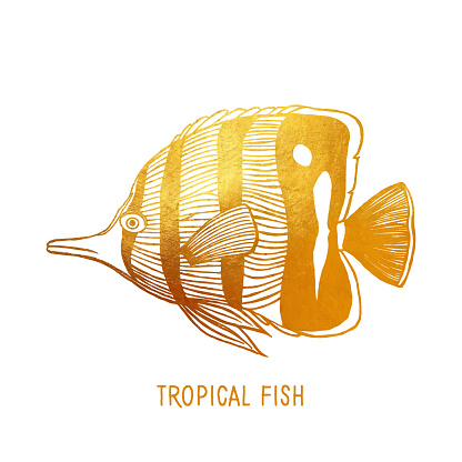 Gold Tropical Fish Isolated. Hand Painted Clip Art Design Element for Labels, Business Cards, Flyers.