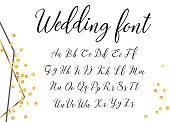 Vector handwritten lettering alphabet. Wedding calligraphic font on white background.