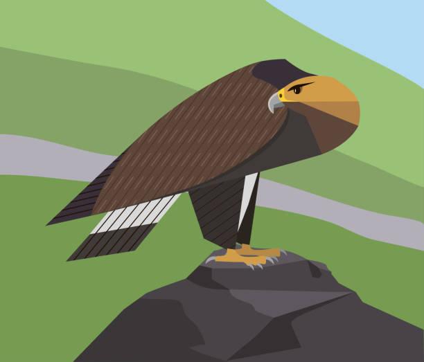 Golden Eagle - ilustración de arte vectorial