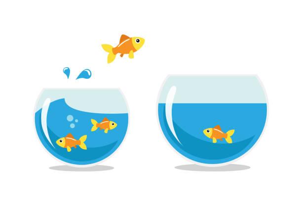 Pez dorado saltando - ilustración de arte vectorial