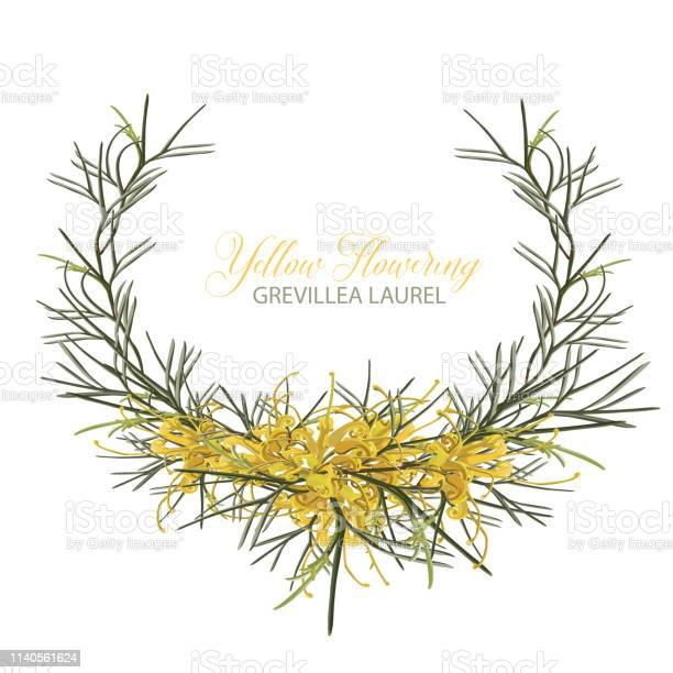 Golden grevillea floral wreath vector vector id1140561624?b=1&k=6&m=1140561624&s=612x612&h=rr4nizk6dvs2lktjqo9 pik3fyd1nkhzdyzlmxb57qo=