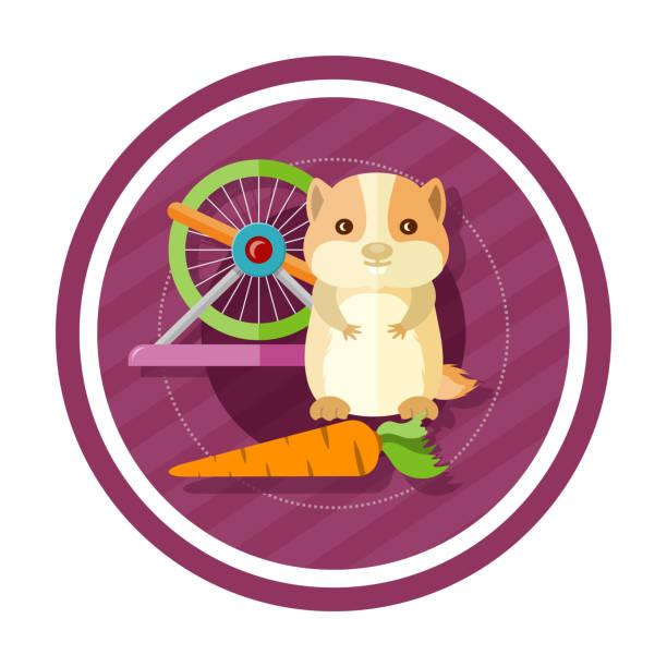 golden hamster essen karotten - hamsterhaus stock-grafiken, -clipart, -cartoons und -symbole