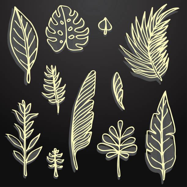 Golden hand Drawn leaf set vector art illustration