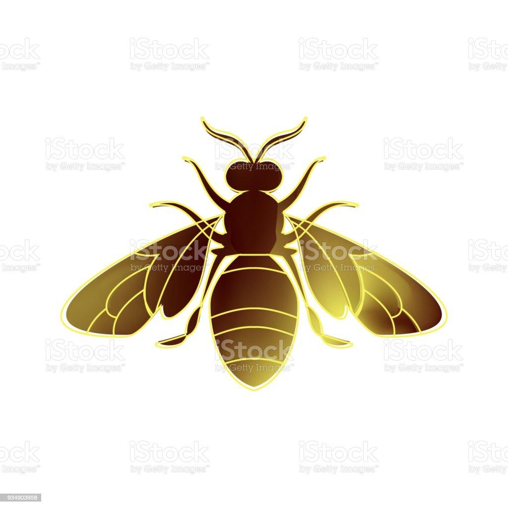 Golden Honey Bee Uterus On White Background Stock Vector Art & More ...