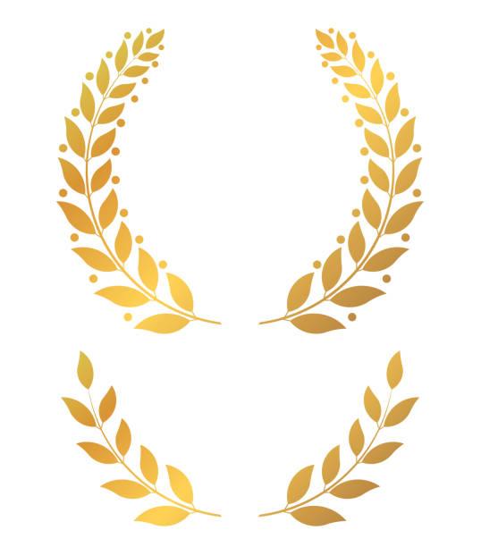 Golden laurel wreaths, round and half vector illustration vector art illustration