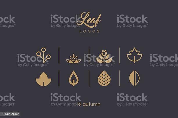 Golden minimal leaf and foliage logo icons collection vector id614235662?b=1&k=6&m=614235662&s=612x612&h=hyc fp3fxip2byn71qghrypvqjqsuyrmimjzohjjs i=