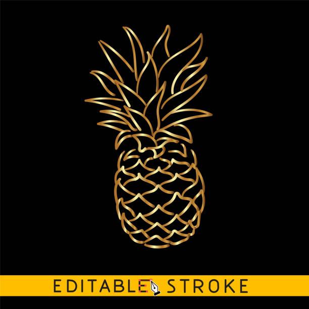bildbanksillustrationer, clip art samt tecknat material och ikoner med gyllene ananas eller ananas. guld ikonen på svart bakgrund. lätt att byta vektor med redigerbara linjer. - summer sweden