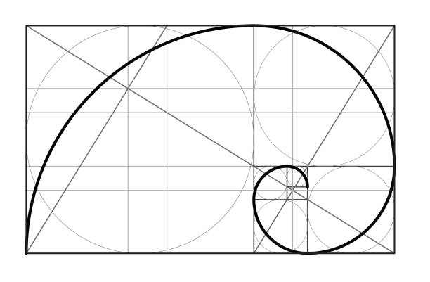 Golden ratio. Cover template. Golden ratio.Template for the construction of a helix. Constructing a composition, an ideal proportion of the proportion. Template design. Scalable vector illustration of spiral with golden ratio. nautilus shell stock illustrations