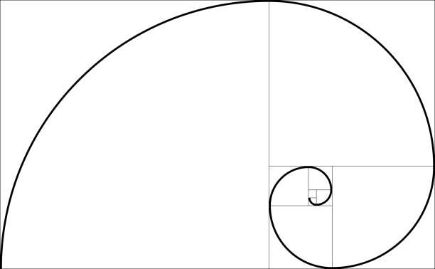 golden ratio geometric concept. fibonacci spiral. vector illustration - золотое сечение stock illustrations