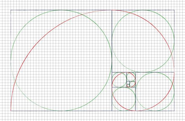 golden ratio spiral. mathematical formula to guide designers for harmony composition - golden ratio stock illustrations