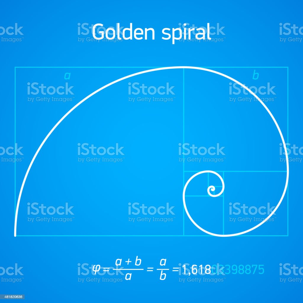 Golden ratio spiral vector art illustration