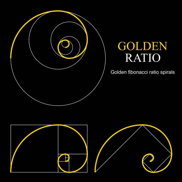 golden ratio template set. proportion symbol. graphic design element. golden section spiral - сетка фибоначчи stock illustrations