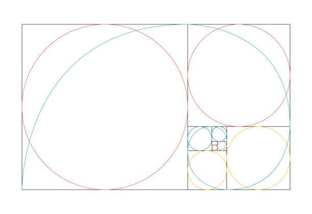 golden ratio template vector - золотое сечение stock illustrations