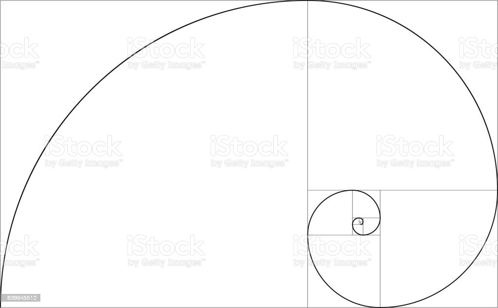 golden ratio template vector stock vector art more images of rh istockphoto com golden ratio vector template golden ratio vector illustrator