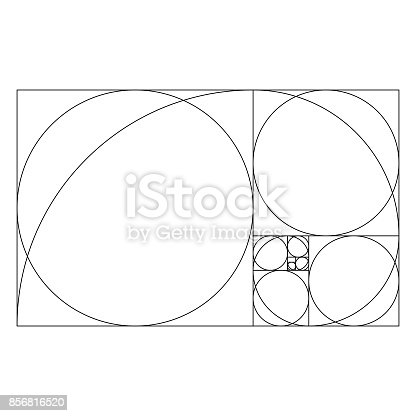 Vector illustration of a template of the golden ratio