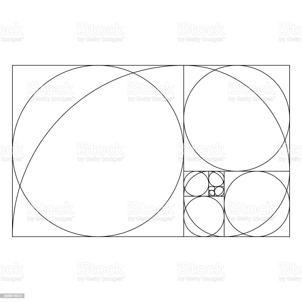 Golden ratio template with proportional circles vector art illustration