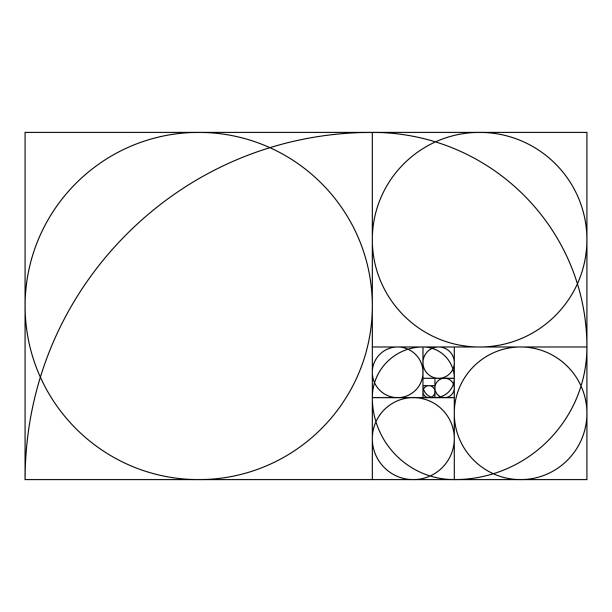 golden ratio template with proportional circles - сетка фибоначчи stock illustrations