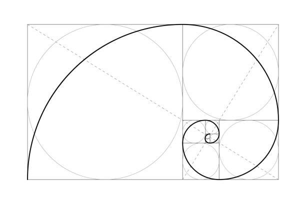 Golden ratio Golden ratio. Fibonacci number. Circles in golden proportion. Geometric shapes. Abstract vector background. Vector mollusk stock illustrations