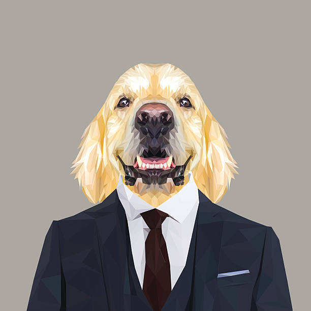 ilustraciones, imágenes clip art, dibujos animados e iconos de stock de golden retriever dog animal dressed up in navy blue suit. - moda de negocios informal