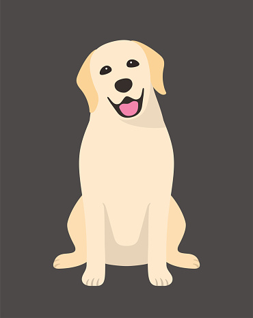 Golden Retriever is sitting in the front, looking at you with its head tilted.