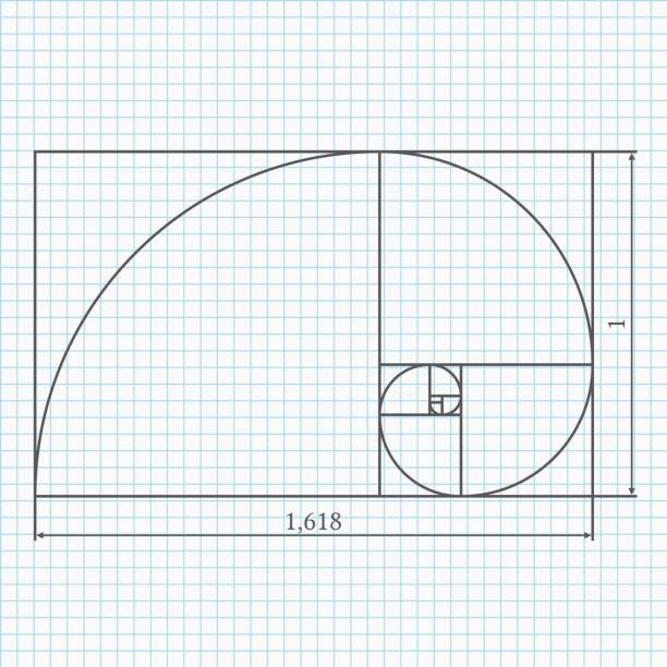 golden abschnitt - geometriestunde grafiken stock-grafiken, -clipart, -cartoons und -symbole