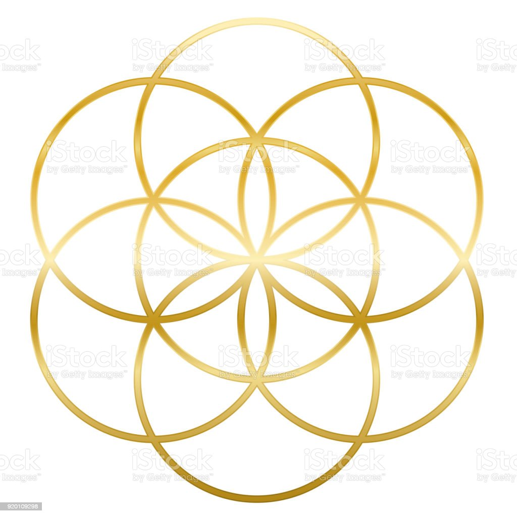 Golden Seed Of Life Precursor Of Flower Of Life Symbol Unique