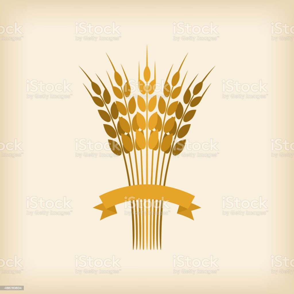Golden sheaf of wheat with ribbon vector art illustration