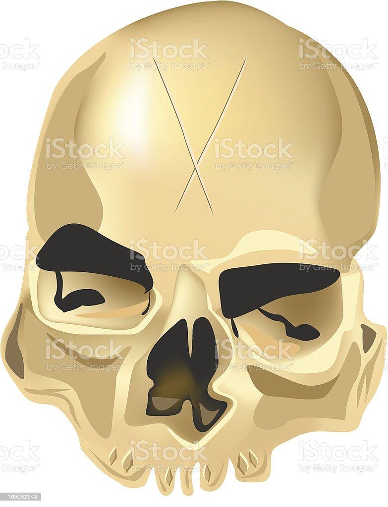 Golden Skull royalty-free stock vector art