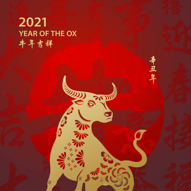 황소의 황금 해 - chinese new year stock illustrations