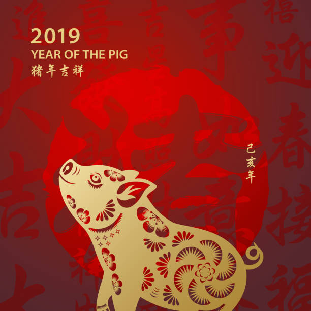golden year of the pig - year of the pig stock illustrations, clip art, cartoons, & icons