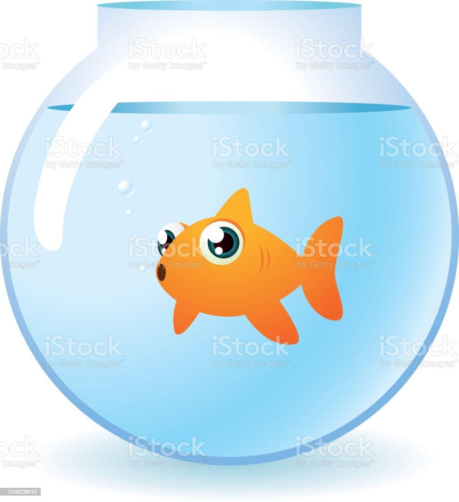 Pesce rosso in una ciotola ammirando telecamera con bolle for Bubbles in fish bowl