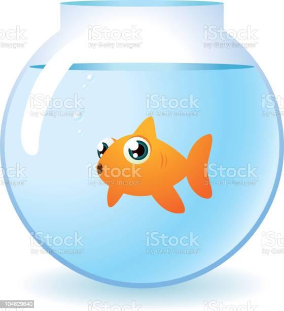 Goldfish in a bowl staring at camera with bubbles vector id104629640?b=1&k=6&m=104629640&s=612x612&h=ynqugixchhfybcimpswwsrdpuk5rmmetny ukvcwbqu=