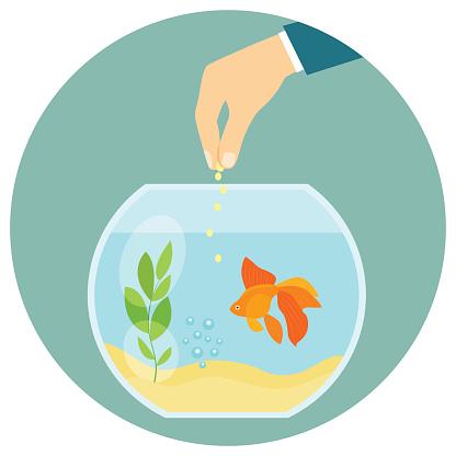 Goldfish in aquarium isolated. Feeding goldfish. Flat vector illustration