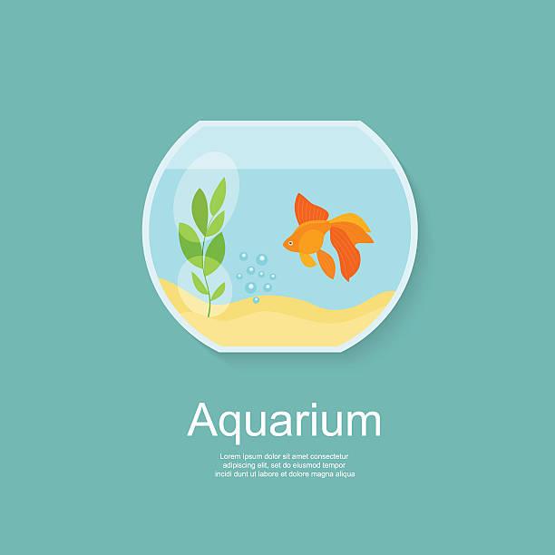 金魚の水族館絶縁ます。フラットベクトルイラストレーション - 水族館点のイラスト素材/クリップアート素材/マンガ素材/アイコン素材