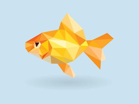 Goldfish low polygon on blue background