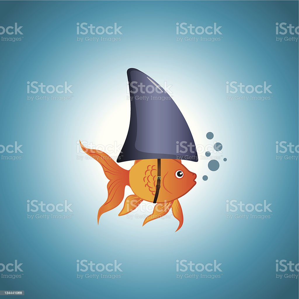 Goldfish Shark vector art illustration